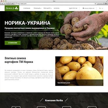 Сайт компании «Норика»